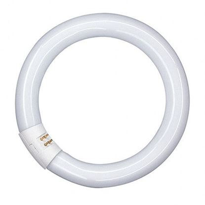 Picture of 32W Lumilux T9 Circular Fluorescent Lamp G10Q