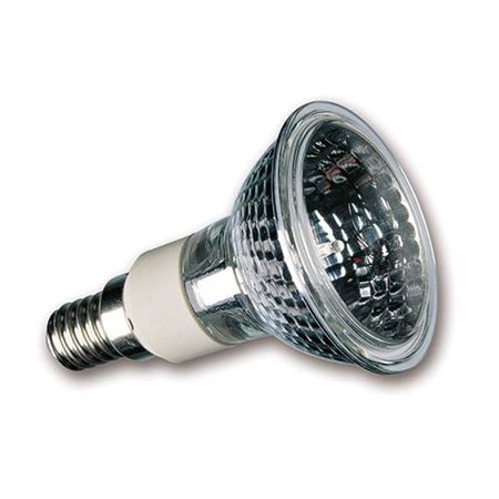Picture for category R50 Halogen Bulbs