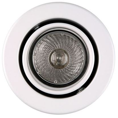 Picture of SylFire Mains Voltage Fire Rated Tilting Downlight