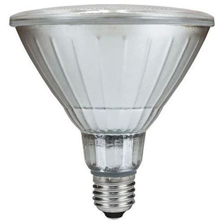 Picture for category PAR 38 LED Bulbs