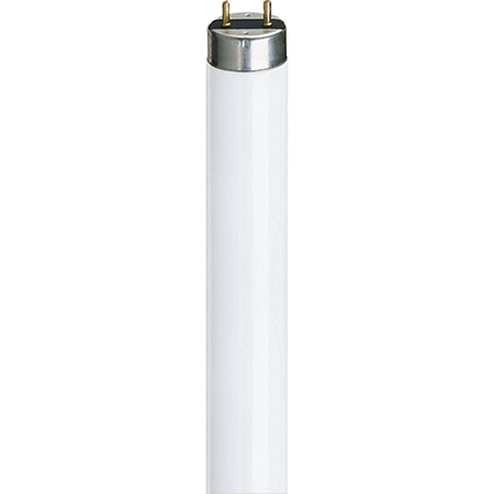 Picture for category T8 Tube Fluorescent Tubes