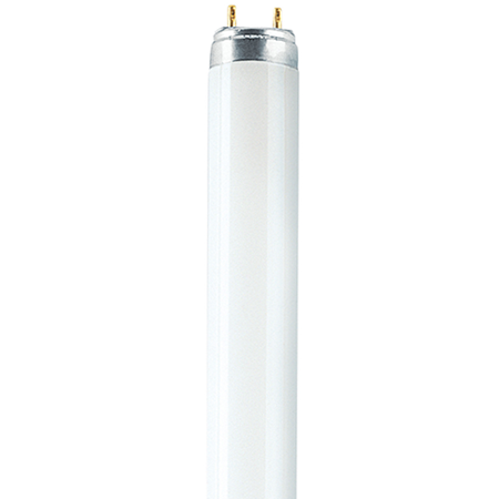 Picture for category T8 Biolux and Natura Fluorescent Tubes