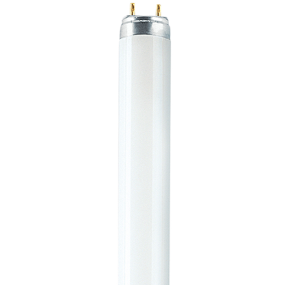 Picture of T8 Lumilux Deluxe Fluorescent Tube