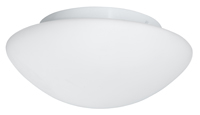 Picture of White Glass Flush Fitting (23CM)