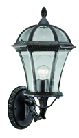 Picture of Capri 1 Light Large Black/Silver Outdoor Wall Light
