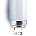 Picture for category G13 T8 Fluorescent Tube