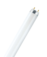Picture of T8 Lumilux Fluorescent Tube
