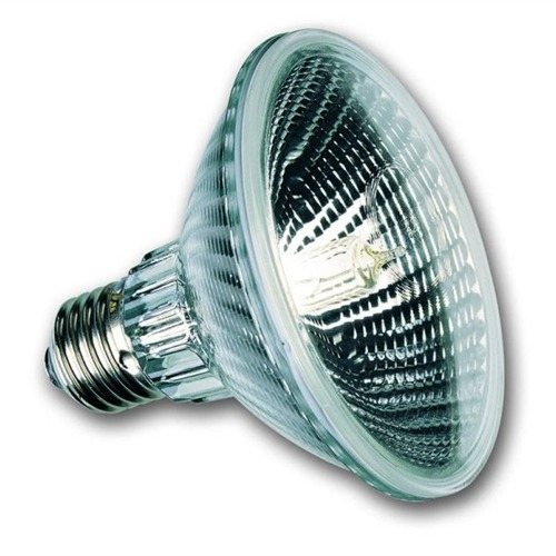 Picture for category PAR 30 Bulbs